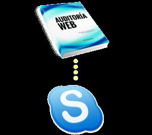 auditoria-web-skype-hangout