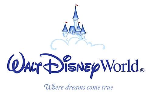 Ejemplo Matriz CAME para Disney World